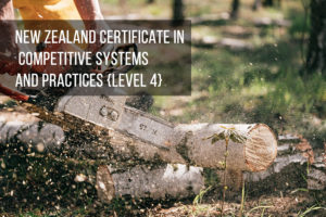 New Zealand Certificate in Competitive Systems and Practices (Level 4)